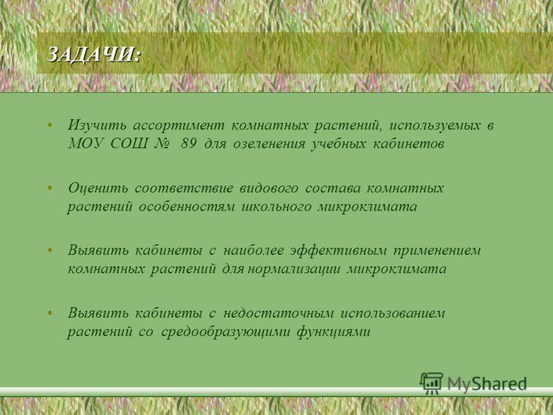 ЗАДАЧИ: Изучить ассортимент комнатных растений, используемых в МОУ СОШ 89 для озеленения учебных кабинетов Оценить соответствие видового состава комнатных растений особенностям школьного микроклимата Выявить кабинеты с наиболее эффективным применение