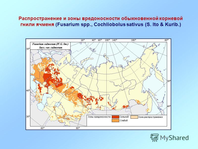 Распространение и зоны вредоносности обыкновенной корневой гнили ячменя (Fusarium spp., Cochliobolus sativus (S. Ito & Kurib.)
