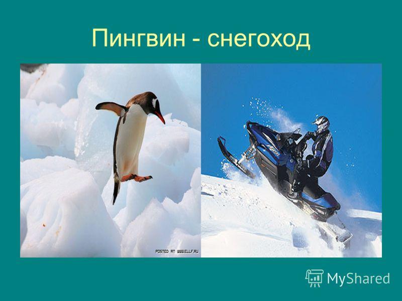 Пингвин - снегоход