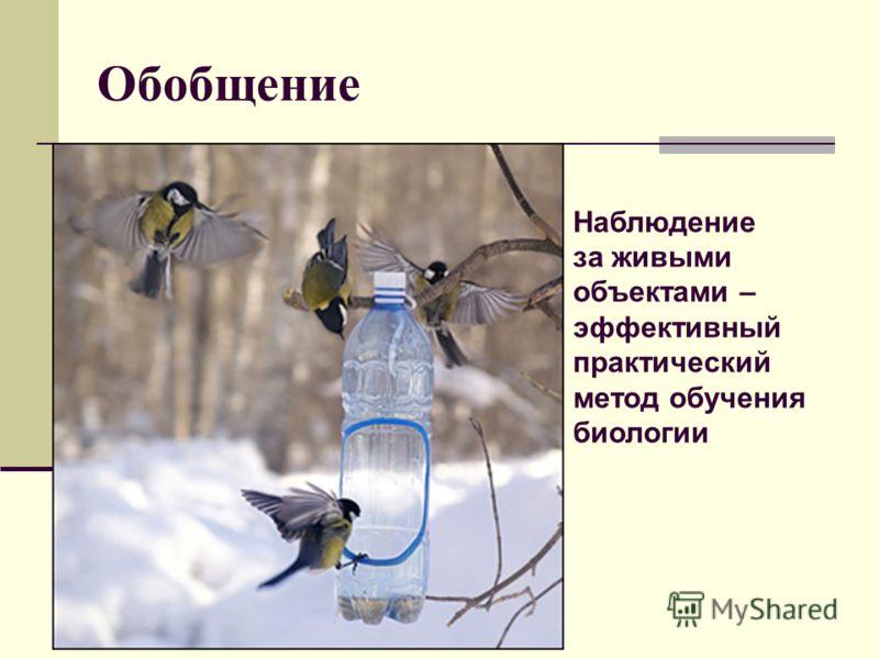 Обобщение Наблюдение за живыми объектами – эффективный практический метод обучения биологии