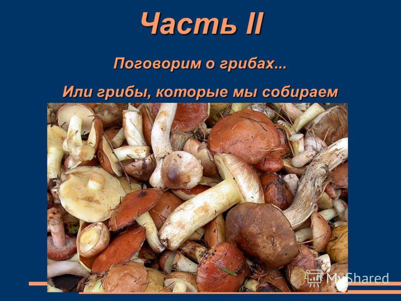 Часть II Поговорим о грибах... Или грибы, которые мы собираем