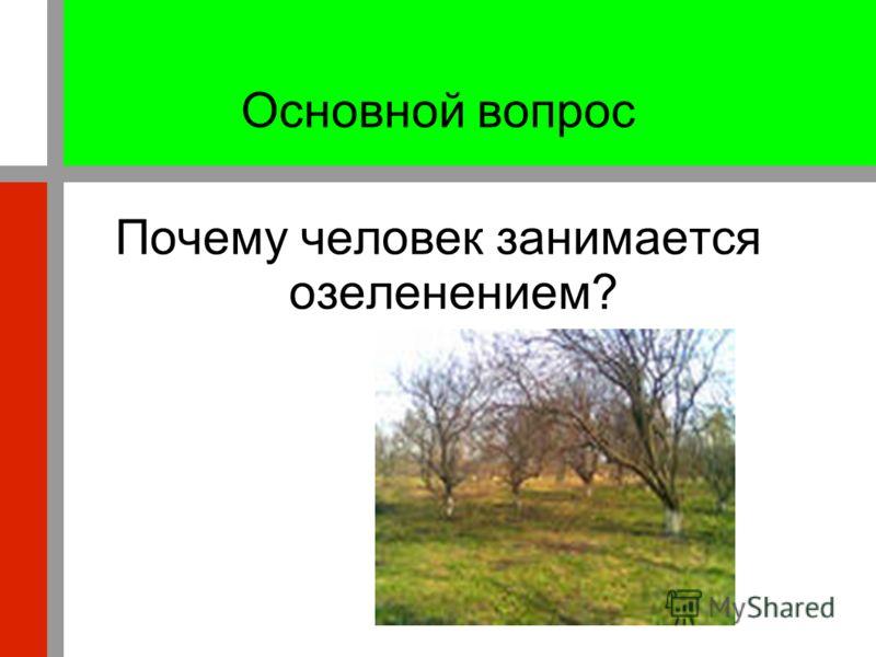 Основной вопрос Почему человек занимается озеленением?