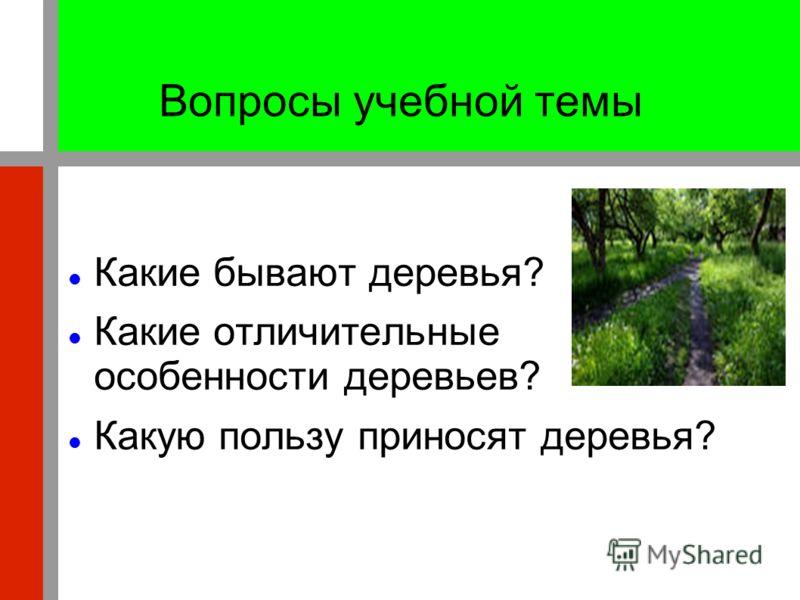 Вопросы учебной темы Какие бывают деревья? Какие отличительные особенности деревьев? Какую пользу приносят деревья?