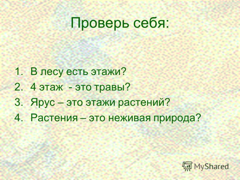 12 Проверь себя: 1.В лесу есть этажи? 2.4 этаж - это травы? 3.Ярус – это этажи растений? 4.Растения – это неживая природа?