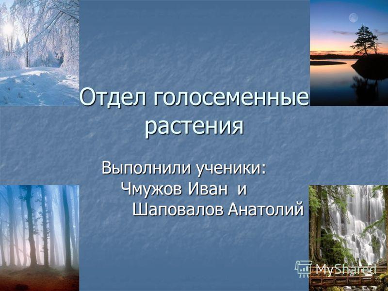 Отдел голосеменные растения Выполнили ученики: Чмужов Ивани Шаповалов Анатолий