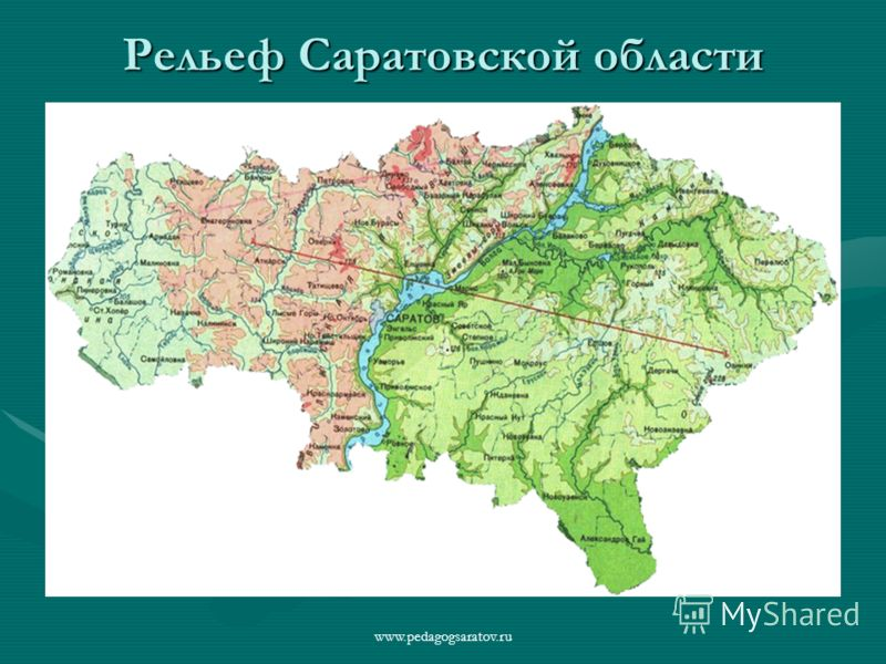 Рельеф Саратовской области www.pedagogsaratov.ru