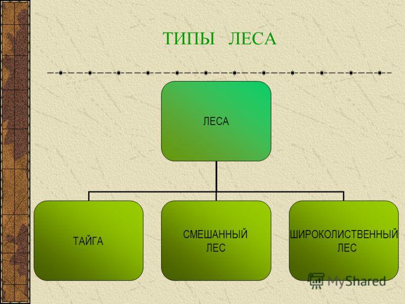 презентации к учебнику мордковича 5 класс