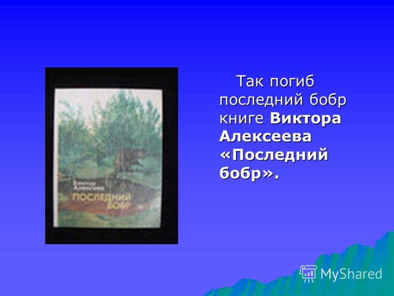 Так погиб последний бобр книге Виктора Алексеева «Последний бобр». Так погиб последний бобр книге Виктора Алексеева «Последний бобр».