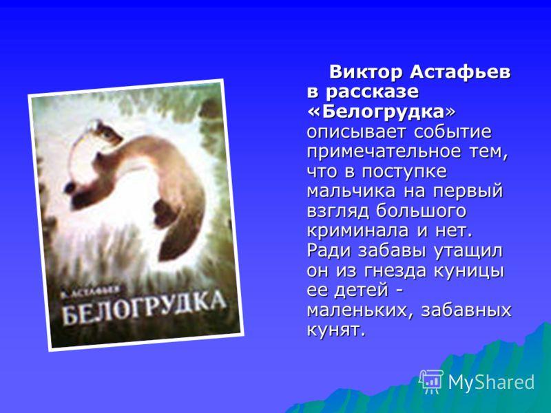 Виктор Астафьев в рассказе «Белогрудка» описывает событие примечательное тем, что в поступке мальчика на первый взгляд большого криминала и нет. Ради забавы утащил он из гнезда куницы ее детей - маленьких, забавных кунят.