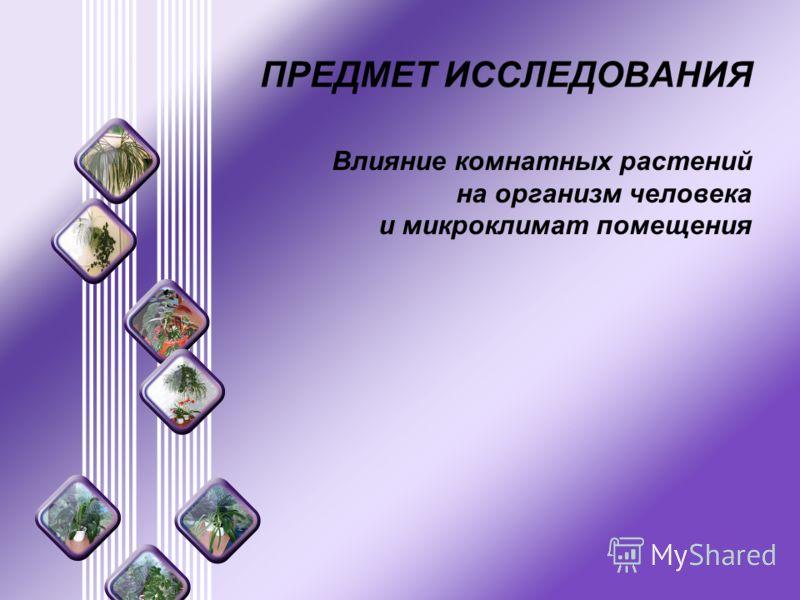 ПРЕДМЕТ ИССЛЕДОВАНИЯ Влияние комнатных растений на организм человека и микроклимат помещения