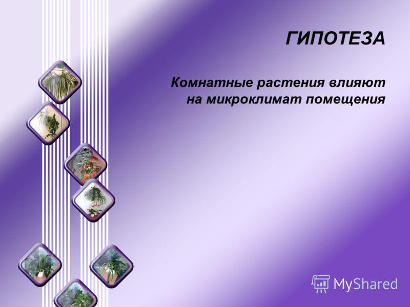 ГИПОТЕЗА Комнатные растения влияют на микроклимат помещения