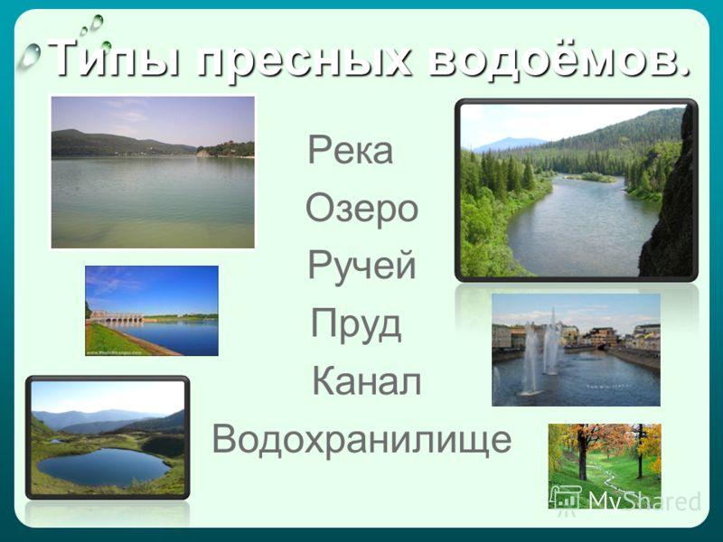 Типы пресных водоёмов. Река Озеро Ручей Пруд Канал Водохранилище