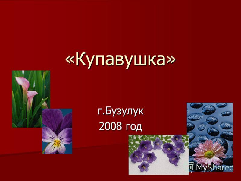 г.Бузулук 2008 год «Купавушка»