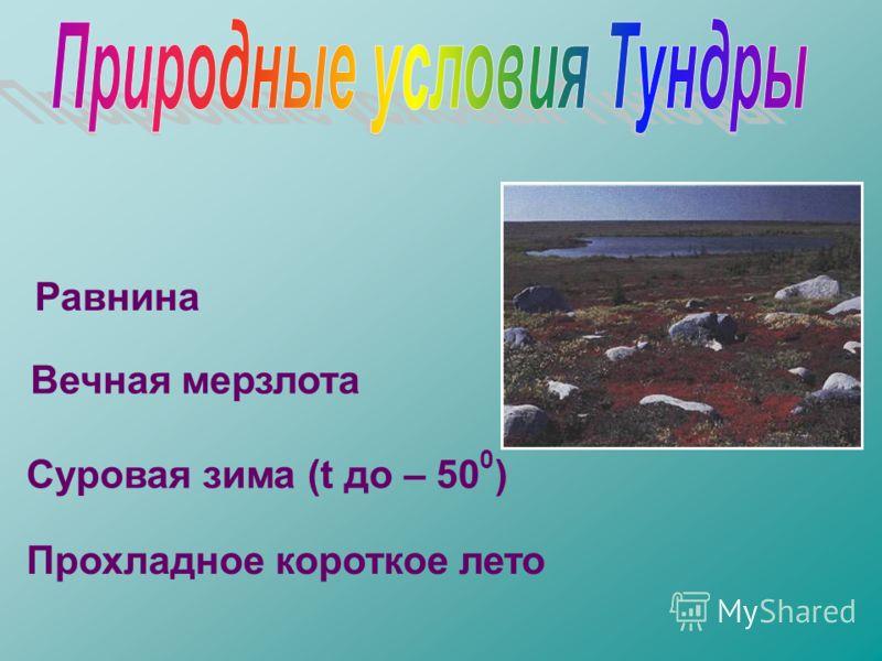 Равнина Вечная мерзлота Суровая зима (t до – 50 0 ) Прохладное короткое лето