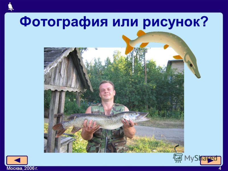 Москва, 2006 г.4 Фотография или рисунок?