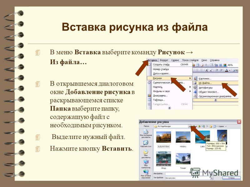 Вставка рисунка из файла 4 В меню Вставка выберите команду Рисунок Из файла… 4 В открывшемся диалоговом окне Добавление рисунка в раскрывающемся списке Папка выберите папку, содержащую файл с необходимым рисунком. 4 Выделите нужный файл. 4 Нажмите кн