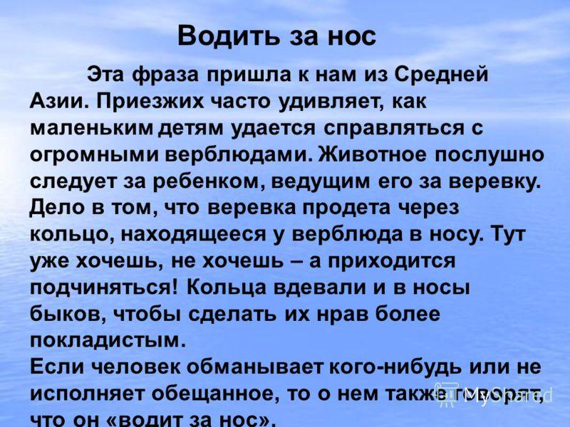 Эта фраза пришла к нам из Средней Азии. Приезжих часто удивляет, как маленьким детям удается справляться с огромными верблюдами. Животное послушно следует за ребенком, ведущим его за веревку. Дело в том, что веревка продета через кольцо, находящееся