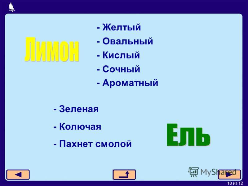 10 из 12 - Желтый - Овальный - Кислый - Сочный - Ароматный - Зеленая - Колючая - Пахнет смолой