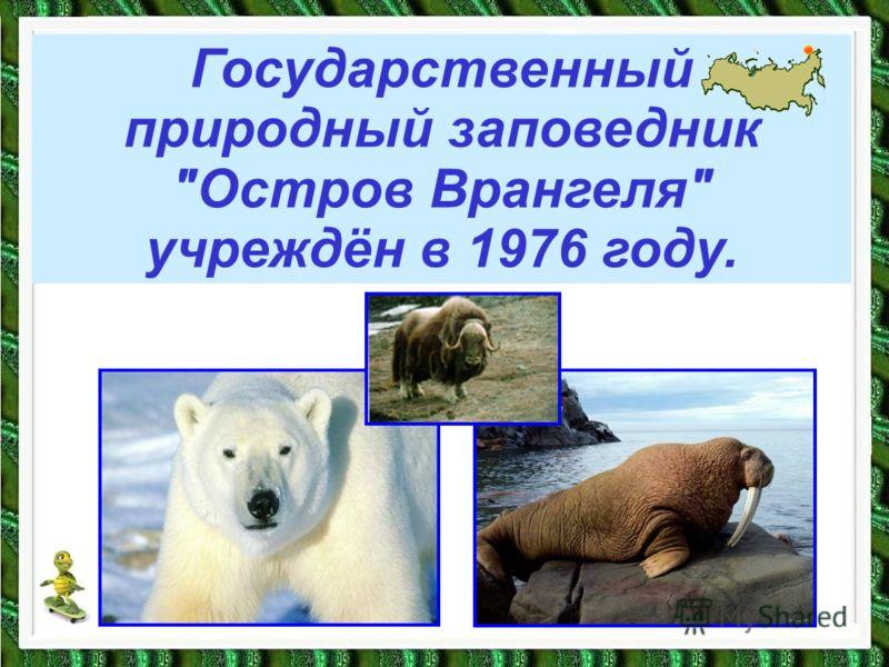 Государственный природный заповедник Остров Врангеля учреждён в 1976 году.
