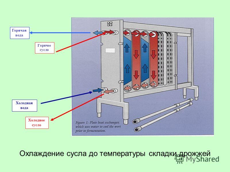 Холодная вода Холодное сусло Горячая вода Горячее сусло Охлаждение сусла до температуры складки дрожжей