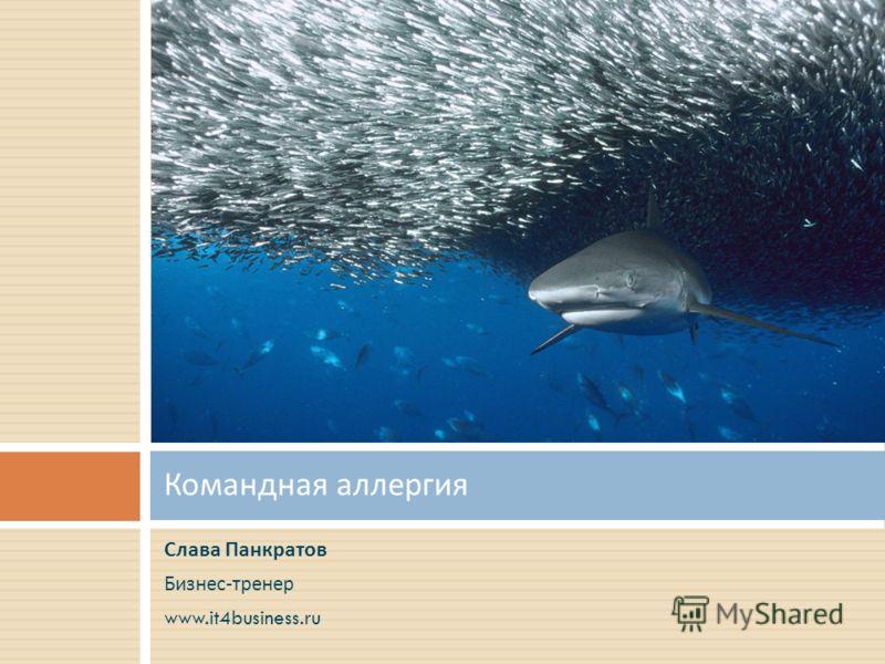 Слава Панкратов Бизнес - тренер www.it4business.ru Командная аллергия