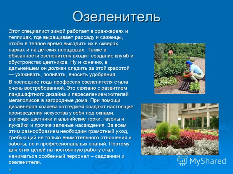 Озеленитель Этот специалист зимой работает в оранжереях и теплицах, где выращивает рассаду и саженцы, чтобы в теплое время высадить их в скверах, парках и на детских площадках. Также в обязанности озеленителя входит создание клумб и обустройство цвет