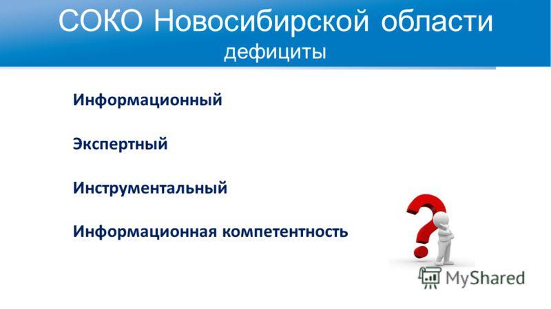 СОКО Новосибирской области дефициты Информационный Экспертный Инструментальный Информационная компетентность