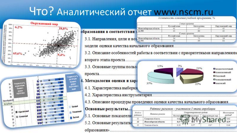 Что? Аналитический отчет www.nscm.ru