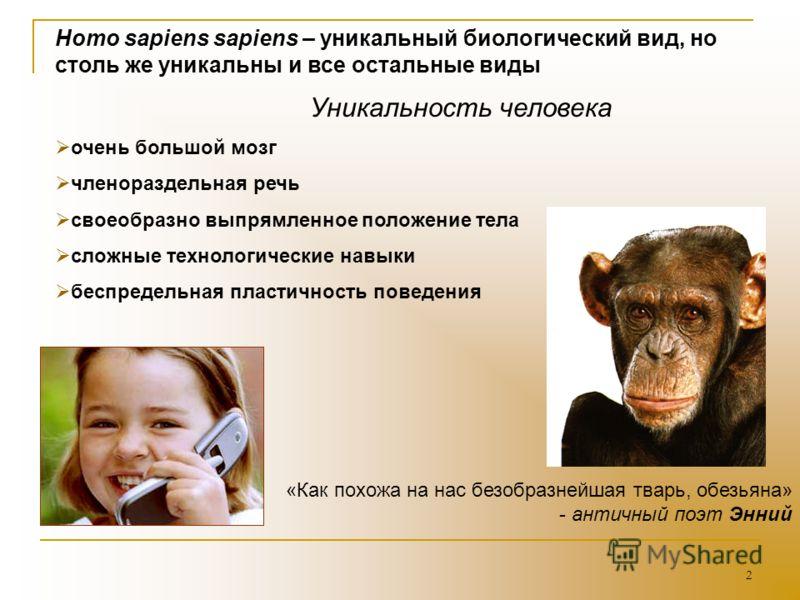 2 Homo sapiens sapiens – уникальный биологический вид, но столь же уникальны и все остальные виды Уникальность человека очень большой мозг членораздельная речь своеобразно выпрямленное положение тела сложные технологические навыки беспредельная пласт