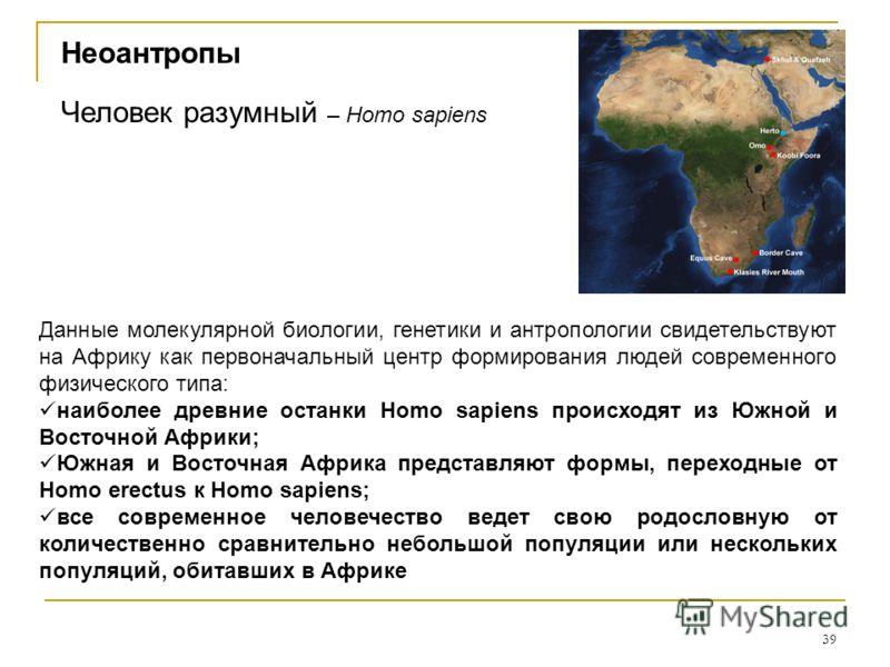 39 Человек разумный – Homo sapiens Данные молекулярной биологии, генетики и антропологии свидетельствуют на Африку как первоначальный центр формирования людей современного физического типа: наиболее древние останки Homo sapiens происходят из Южной и