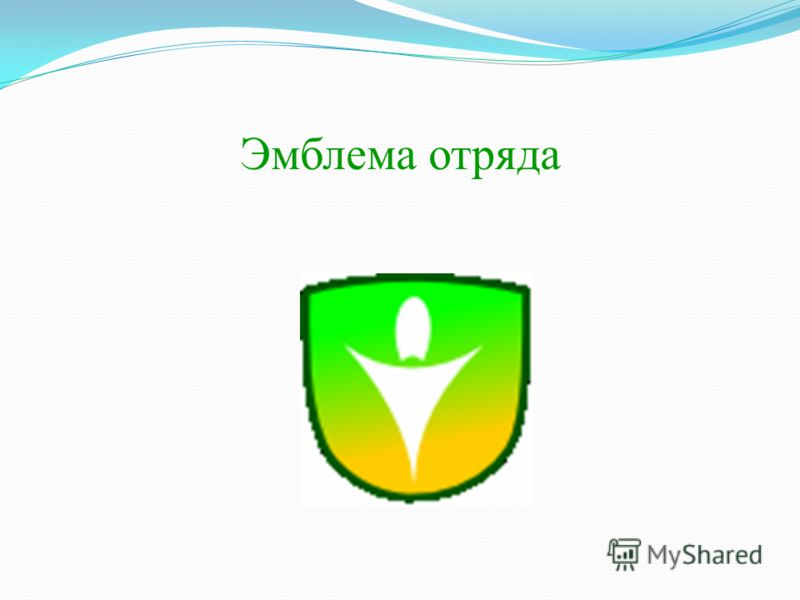 Эмблема отряда