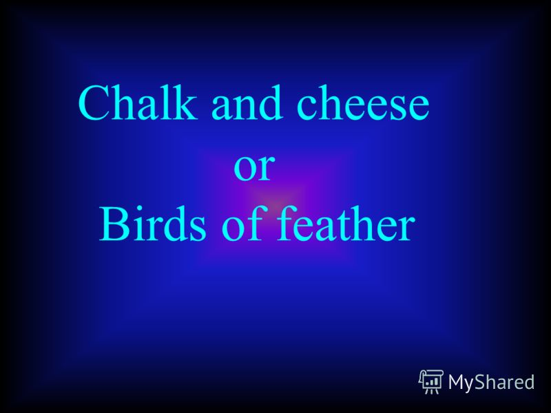 Chalk and cheese or Birds of feather
