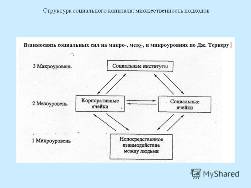 Структура социального капитала: множественность подходов