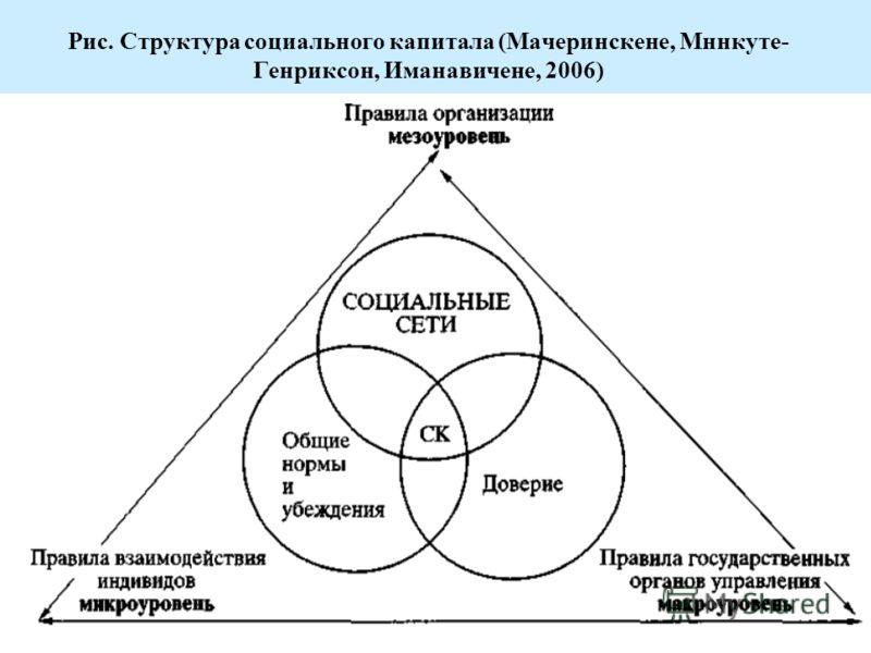 Рис. Структура социального капитала (Мачеринскене, Мннкуте- Генриксон, Иманавичене, 2006)