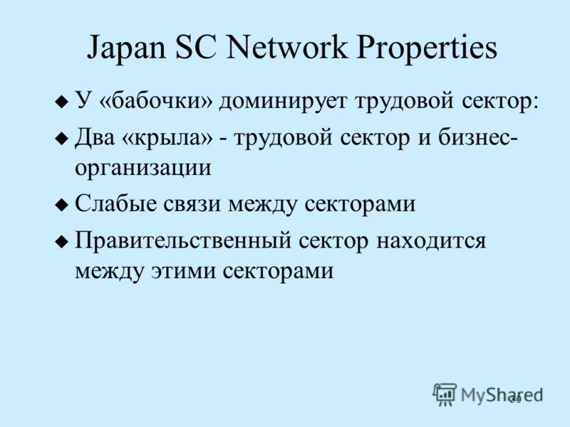 30 Japan SC Network Properties У «бабочки» доминирует трудовой сектор: Два «крыла» - трудовой сектор и бизнес- организации Слабые связи между секторами Правительственный сектор находится между этими секторами