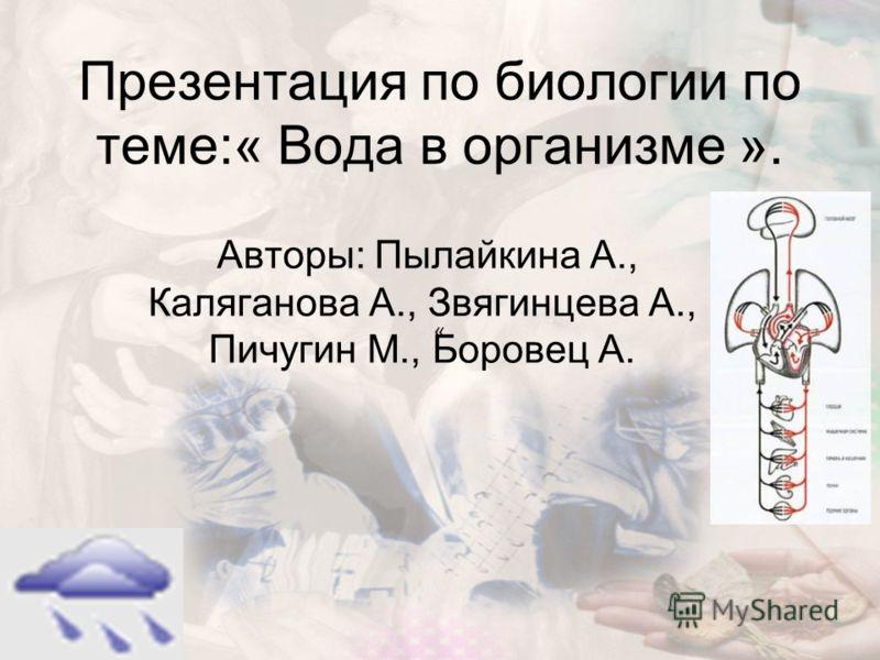 Презентация по биологии по теме:« Вода в организме ». Авторы: Пылайкина А., Каляганова А., Звягинцева А., Пичугин М., Боровец А. «