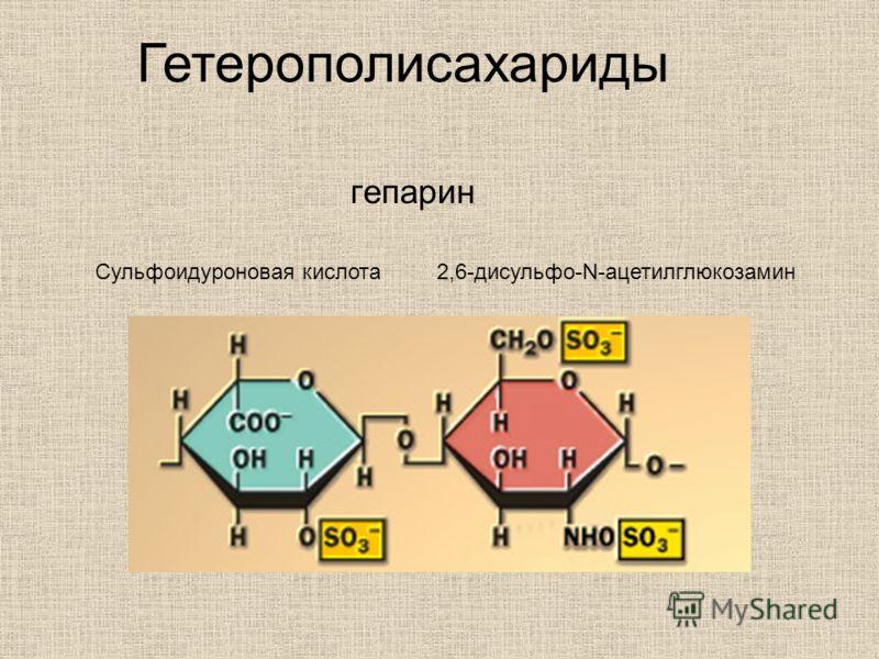 гепарин Сульфоидуроновая кислота 2,6-дисульфо-N-ацетилглюкозамин Гетерополисахариды