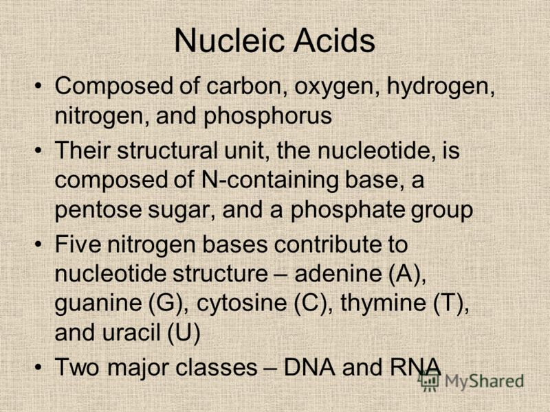 Nucleic Acids Composed of carbon, oxygen, hydrogen, nitrogen, and phosphorus Their structural unit, the nucleotide, is composed of N-containing base, a pentose sugar, and a phosphate group Five nitrogen bases contribute to nucleotide structure – aden
