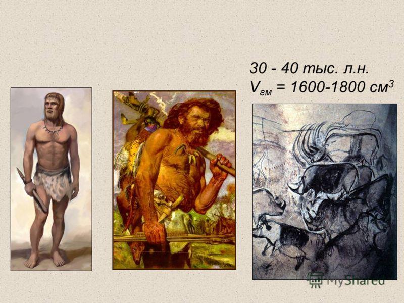 30 - 40 тыс. л.н. V гм = 1600-1800 см 3