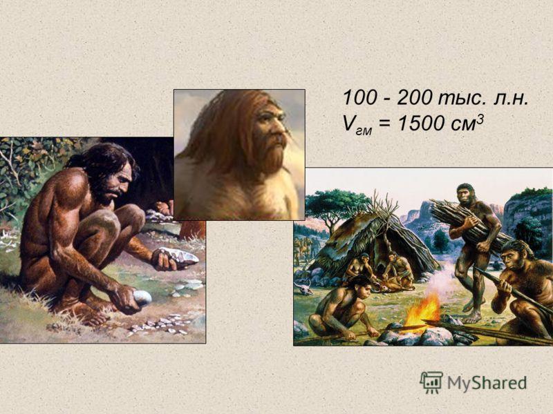 100 - 200 тыс. л.н. V гм = 1500 см 3