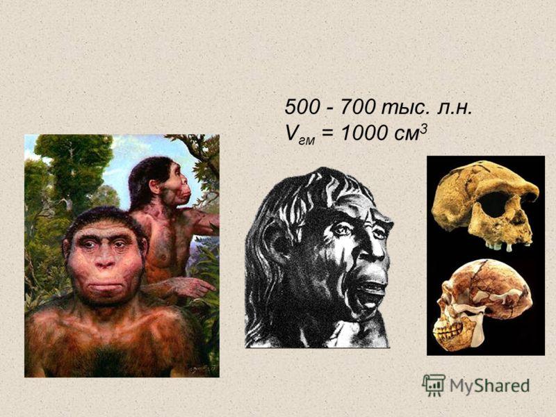 500 - 700 тыс. л.н. V гм = 1000 см 3
