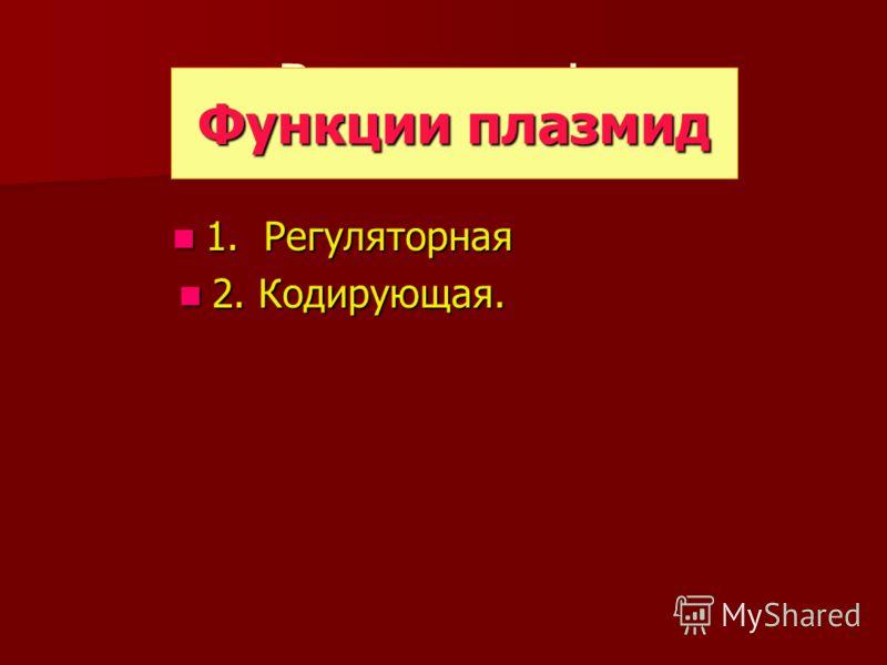 Види плазмід 1. Регуляторная 1. Регуляторная 2. Кодирующая. 2. Кодирующая. Функции плазмид