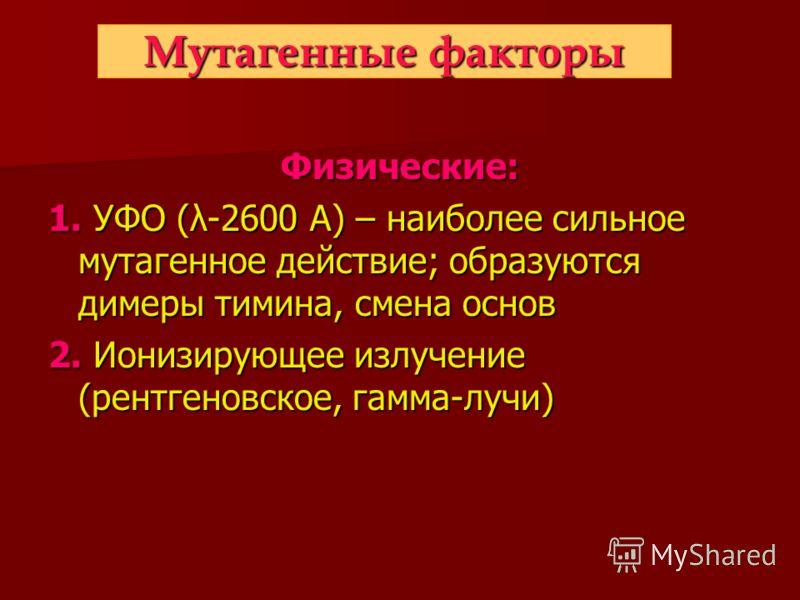 Мутагенные факторы Физические: 1. УФО (λ-2600 А) – наиболее сильное мутагенное действие; образуются димеры тимина, смена основ 2. Ионизирующее излучение (рентгеновское, гамма-лучи)
