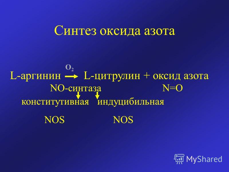 Синтез оксида азота L-аргинин L-цитрулин + оксид азота NO-синтаза N=O конститутивная индуцибильная NOS NOS O2O2