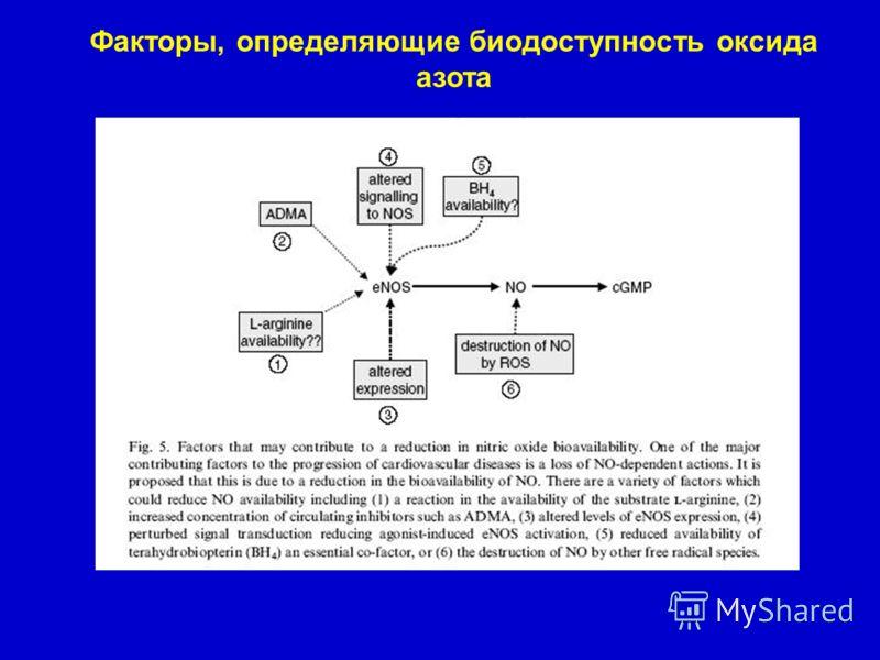 Факторы, определяющие биодоступность оксида азота