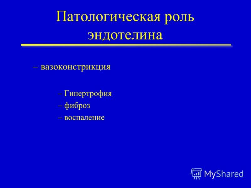 Патологическая роль эндотелина –вазоконстрикция –Гипертрофия –фиброз –воспаление
