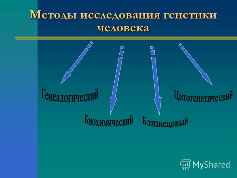 Таблица 1 Методы изучения наследственности человека По ходу урока учащимся предлагается заполнить таблицу, указав Метод, его сущность и значение