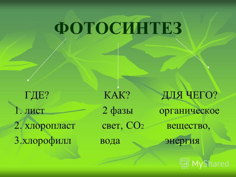 ФОТОСИНТЕЗ ГДЕ? КАК? ДЛЯ ЧЕГО? 1. лист 2 фазы органическое 2. хлоропласт свет, СО 2 вещество, 3.хлорофилл вода энергия