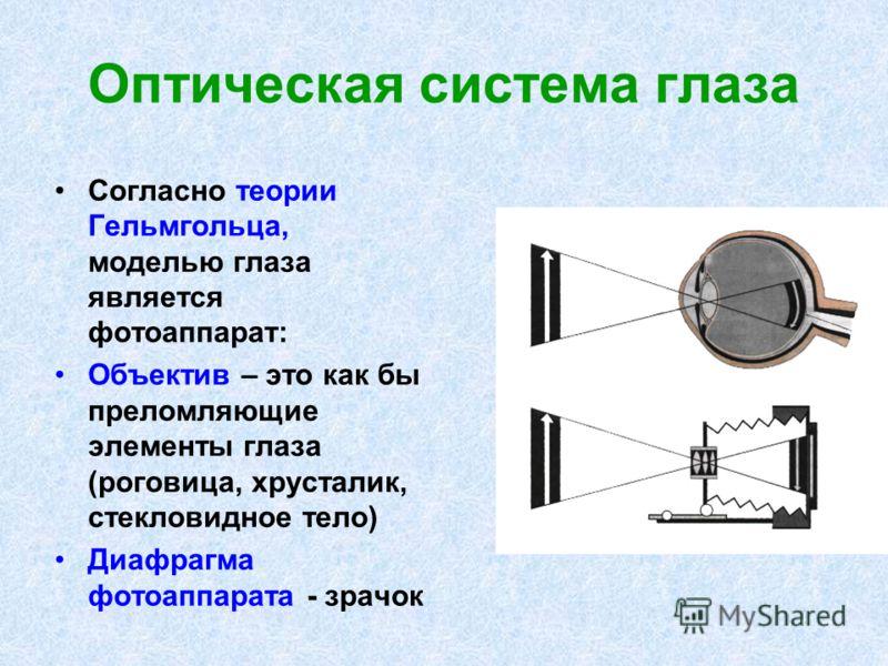 Оптическая система глаза Согласно теории Гельмгольца, моделью глаза является фотоаппарат: Объектив – это как бы преломляющие элементы глаза (роговица, хрусталик, стекловидное тело) Диафрагма фотоаппарата - зрачок