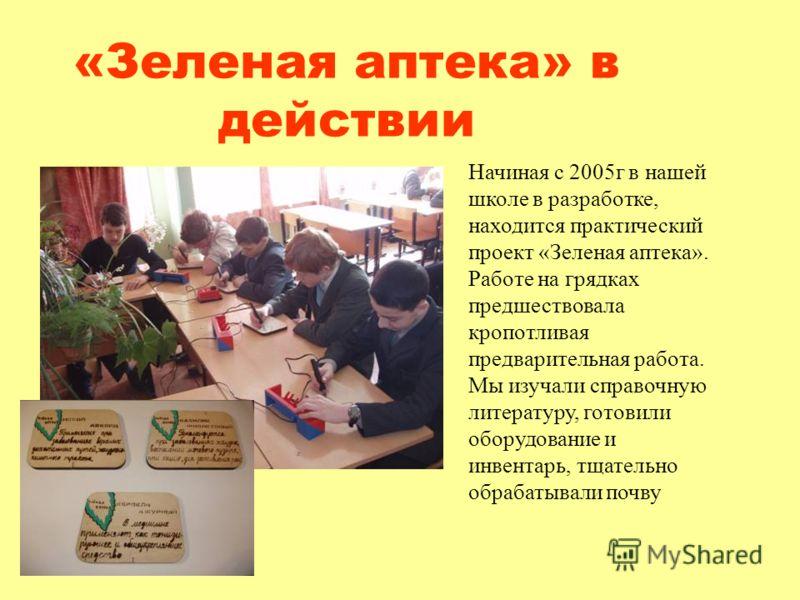 «Зеленая аптека» в действии Начиная с 2005г в нашей школе в разработке, находится практический проект «Зеленая аптека». Работе на грядках предшествовала кропотливая предварительная работа. Мы изучали справочную литературу, готовили оборудование и инв